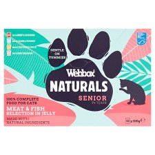 Webbox Natural Senior Selection In Jelly Cat 12X100g