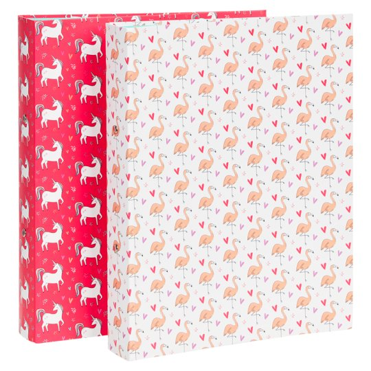 Tesco Dreamer Ring Binder 2 Pack