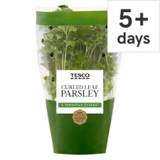 Tesco Curled Parsley Medium Pot