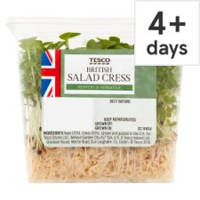 Tesco Growing Salad Cress Each