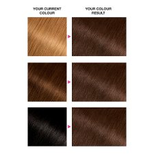 image 2 of Garnier Olia 5.0 Brown Permanent Hair Dye