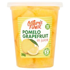 Nature's Finest Grapefruit In Juice 390G