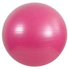 T.Gym Ball 65Cm