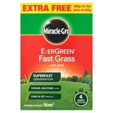 Fast Grass 4 Day Gemination Lawn Seed (20 Sq.M)