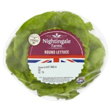 Nightingale Farms Round Lettuce