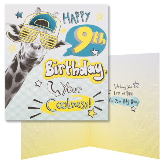 Hallmark Birthday Card Happy 9Th Your Coolness