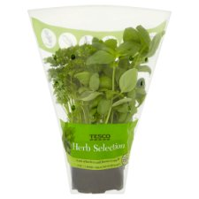 image 1 of Tesco Herb Selection Pot